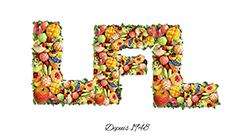 Corbeille et panier de fruits-Créations, corbeilles de fruits, panier de fruits